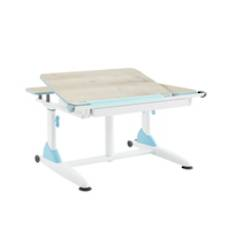 ERGONOMIC DESK BLUE